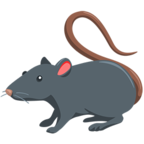 🐀 Facebook / Messenger «Rat» Emoji - Messenger Application version
