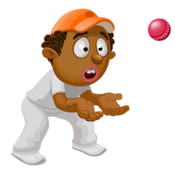 Cricket – Highlights zum Spiel Facebook sticker #7