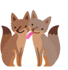 Renards Facebook Facebook sticker #25