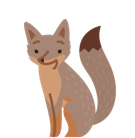 Renards Facebook Facebook sticker #39