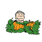 Snoopy`s Harvest Facebook sticker #4