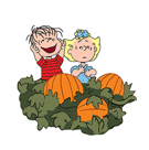 Snoopy`s Harvest Facebook sticker #15